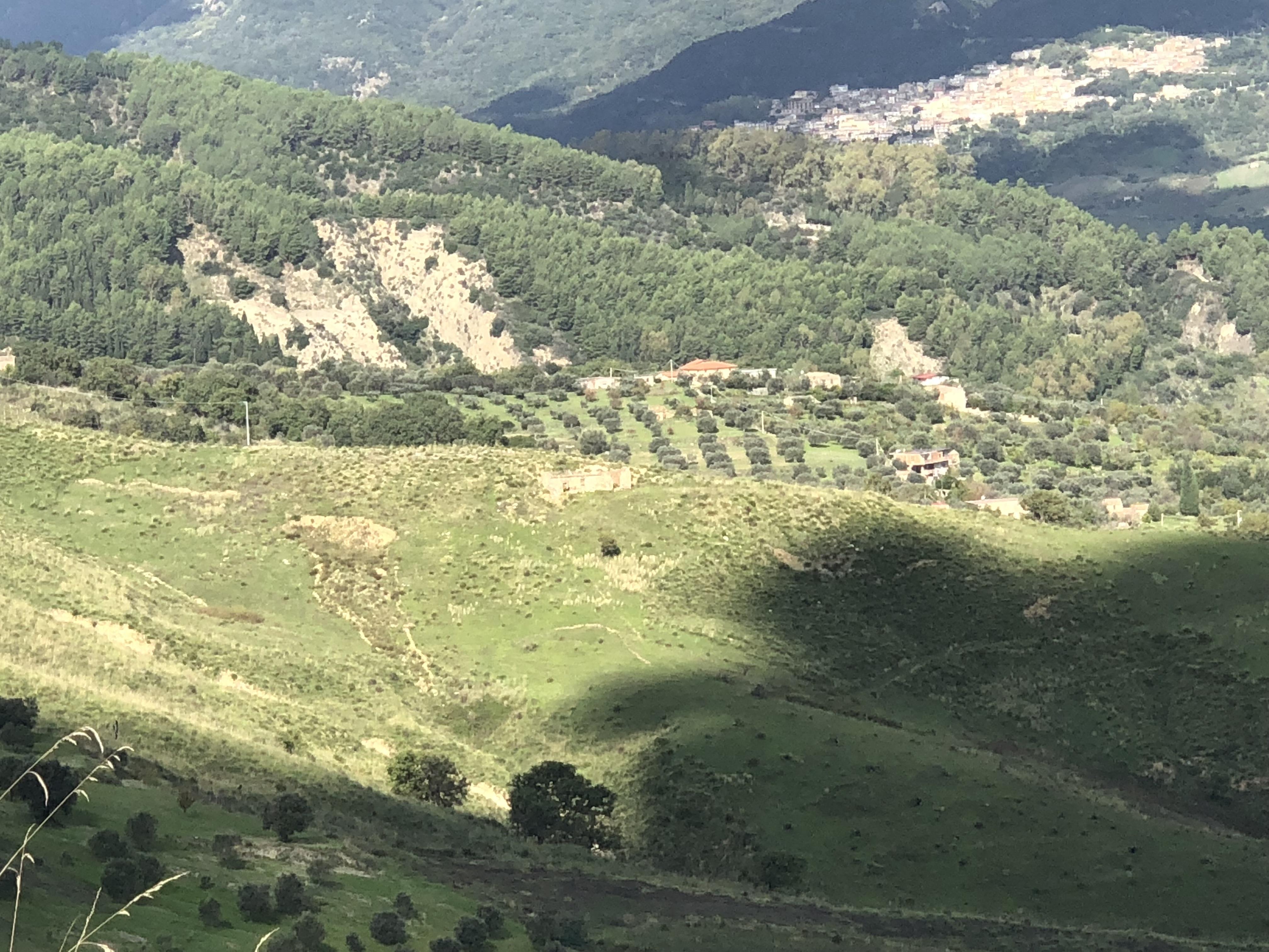Terreno agricolo di ampia estensione
